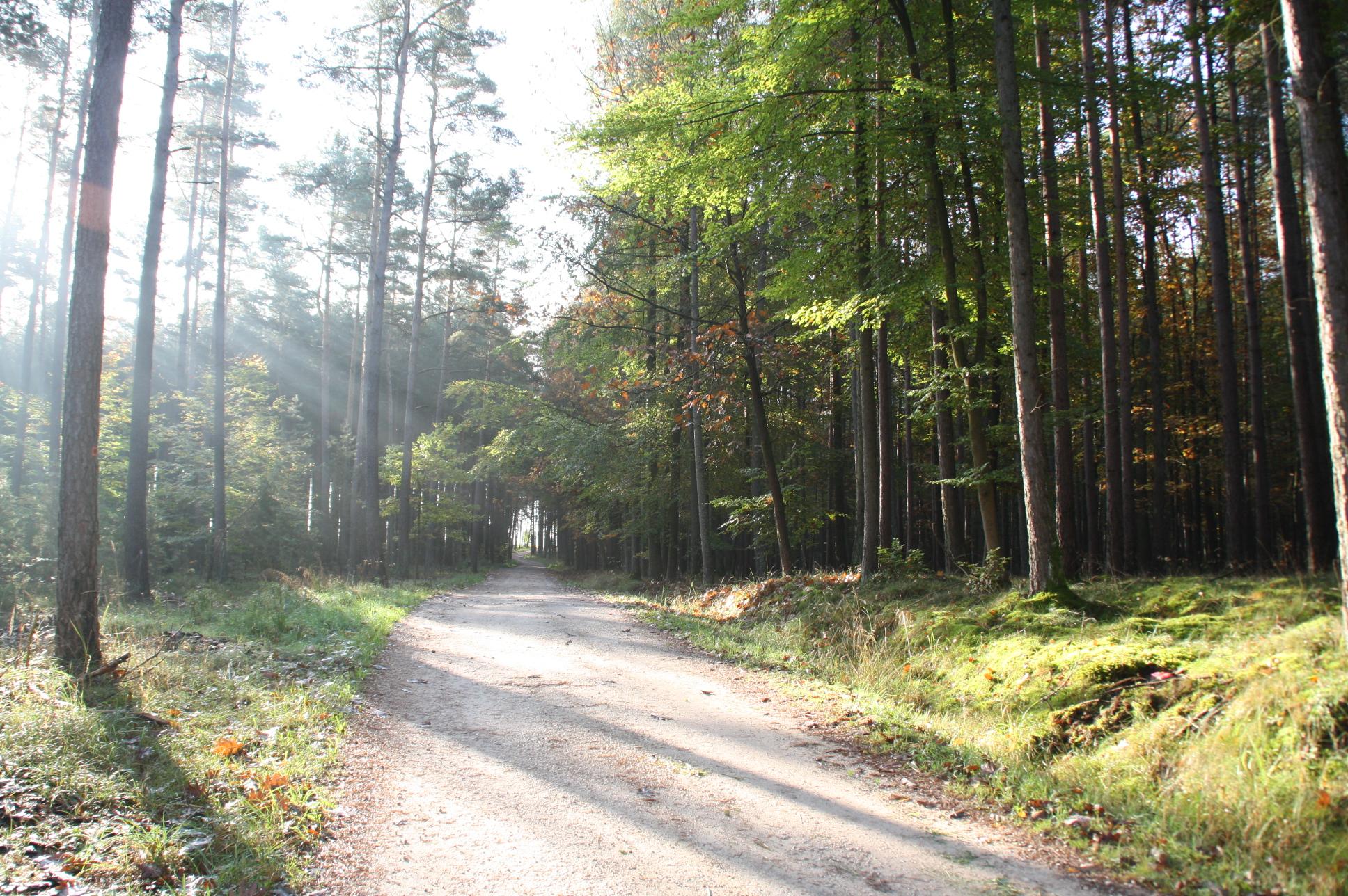 Windrad Rezelsdorf 1