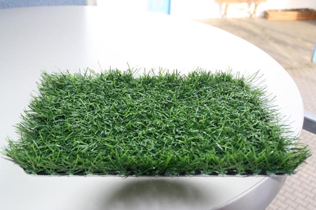 So grün und weich sieht der künftige Belag des jetzigen B-Sandplatzes aus, den man quadratmeterweise symbolisch erwerben kann, um den ASV finanziell zu unterstützen.
