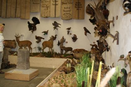 Ein Blick in die allseits bewunderte Jagdausstellung.